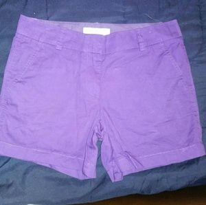 New J Crew 4 Purple Chino Shorts